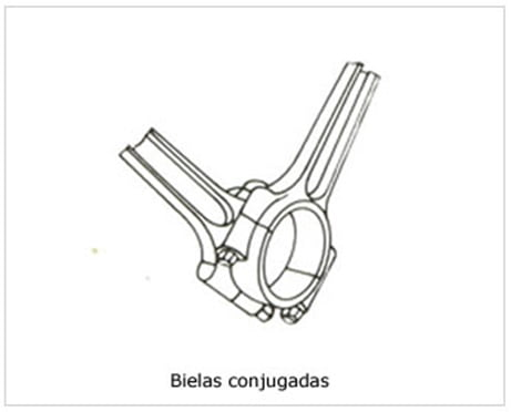 biela-conjugada