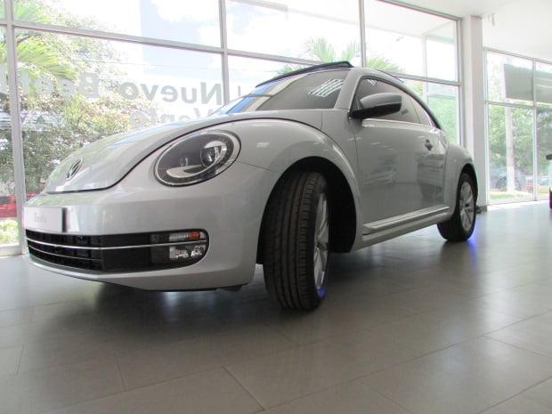 beetle-14