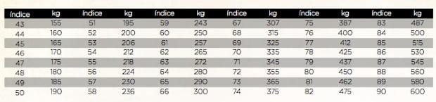 indice carga